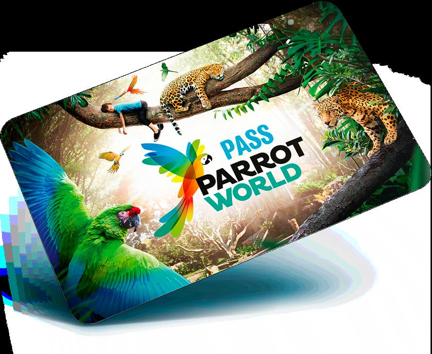passAnnuel
